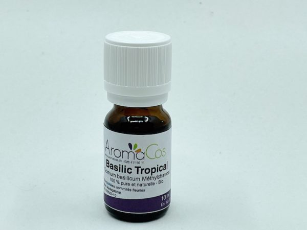 Basilic Tropical Bio
